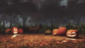 Halloween pumpkins in haunted forest at misty dusk 44729569