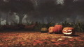 Halloween pumpkins in foggy autumn forest at dusk 44729570