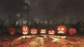 Carved halloween pumpkins in misty autumn forest 44729574