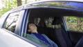 運転中に木陰で休憩する若手ビジネスマン 飲み物17 44749810