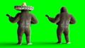กอริลลา,สัตว์,สัตว์ต่างๆ 44778735