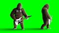고릴라, 원숭이, 동물 44778756