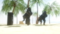 Funny gorillas and monkeys dancing on sunny seaside. Tourism and rest concept. Realistic FullHD 44779428