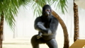 Funny gorillas and monkeys dancing on sunny seaside. Tourism and rest concept. Realistic FullHD 44779437