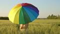 傘 雨傘 カサの動画 44887016