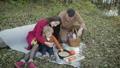 ピクニック ファミリー 家族の動画 44953117