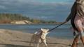 해변, 개, 딸 44969625
