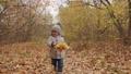 autumn, child, running 45023796