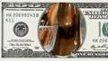 Liquid hot chocolate in frame of 100 dollar bill 45050366