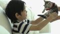 亚洲 亚洲人 猫 45058557