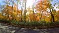 秋の支笏湖-ドライブイメージ- 45082765