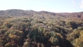 十和田湖 紅葉 ドローン撮影 山から湖へのパン 45115187