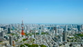 ทิวทัศน์ของโตเกียวเวลาล่วงเลยขนมปังสีเขียวสดในฤดูใบไม้ผลิ 45205400