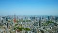 ทิวทัศน์ของโตเกียวเวลาล่วงเลยฤดูใบไม้ผลิแก้ไขสีเขียวสด 45205401