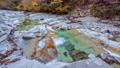 秋の面河渓 45234937