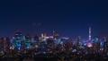 东京夜景,游戏中时光倒流,东京天空树和东京塔同时·FIX 45282506