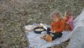 ピクニック ベビー 赤ちゃんの動画 45333328