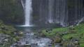 在Fujinomiya市拍攝Shiraito瀑布和瀑布的旅遊 45414587