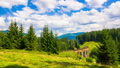 bridge, railway, landscape 45450240