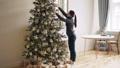 クリスマス 樹木 樹の動画 45486271