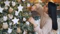 クリスマス 樹木 樹の動画 45486321