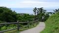 Akita, shirakami, park 45536791