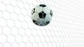 球 足球 目标 45559938