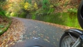 Take the side car and follow the autumnal mountain road 45623643