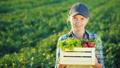woman, portrait, farmer 45630123