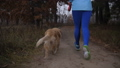 Active healthy girl running outdoors with her dog 45719547