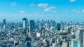 8K·東京風光·遊戲中時光倒流·從惠比壽·澀谷·新宿·青山·代代木·廣尾·潘看 45722618