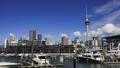 Auckland rich city centre 45842527