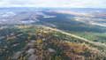 bird eye view logged glades among pine and birch wood 45844228