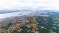 aerial panorama wood with logged glades and city at lake 45844232