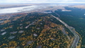 aerial view pine and gold birch wood with ashes sites 45844235