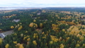 aerial panorama evergreen and gold deciduous forest 45844237