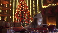 Girl playing with tablet, smartphone near Christmas tree 45853004