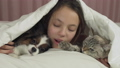 Happy teen girl communicates with dog Papillon and Thai cat in bed stock footage video 45892201