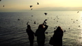 People feed seagulls on the seashore. Slow motion. 45935107