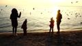 People feed seagulls on the seashore. Slow motion. 45935110