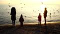 People feed seagulls on the seashore. Slow motion. 45935111