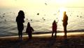 People feed seagulls on the seashore. Slow motion. 45935112