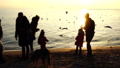 People feed seagulls on the seashore. Slow motion. 45935113
