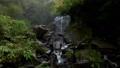 Hyakune的箱根瀑布 46018010