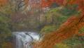 Kaneyama秋葉和瀑布 46018410