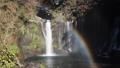 秋の白糸の滝と虹 46026259