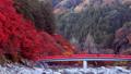 香嵐渓の紅葉 2018 フィクス撮影 46027902
