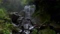 箱根的Hiryu Falls(神奈川县最大的瀑布) 46030680