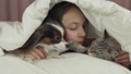 Happy teen girl communicates with dog Papillon and Thai cat in bed stock footage video 46034206