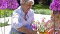 grandmother, granddaughter, flower 46062107
